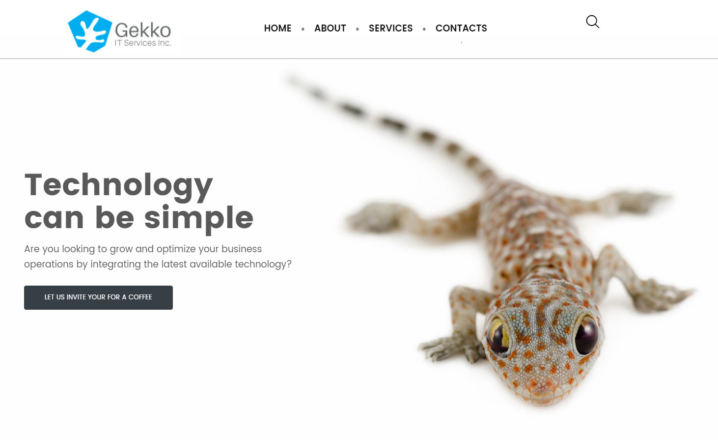 Gekko IT Services